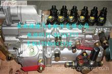 612601080377潍柴WP10.310马力无锡6P1221高压油泵/德龙大泵/612601080377
