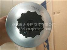 UW0062-Z1两管柴油滤清器/UW0062-Z1
