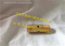 DZ93259560430陕汽德龙L3000低温止回阀/DZ93259560430