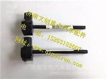 中国重汽豪沃A7水位传感器总成/WG9925530012