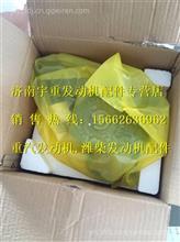潍柴WD615欧II发动机机油泵/AZ1500070021A