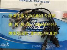 潍柴天然气LNG专用配件氧传感器612600190242/612600190242