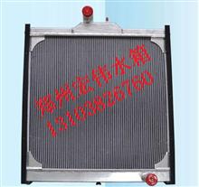 一汽解放新大威 悍威水箱奥威散热器1301010-365,362,382/质量三包