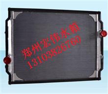 一汽解放新大威奥威骏威悍威水箱 1301010-D816散热器/质量三包