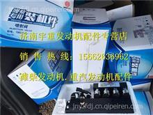 潍柴天然气发动机 CNG燃料计量阀13034186/13034186