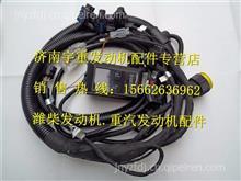 潍柴WP6天然气发动机高压线13050421/13050421