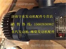 潍柴WP7发动机助力泵610800130014/610800130014