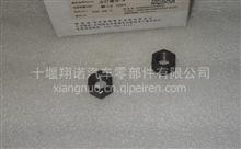 3056158优势供应重庆康明斯NT855发动机配件螺母/3056158