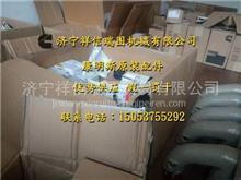连杆轴承组件(标准)4309346 KTA50 康明斯发动机/连杆轴承组件(标准)4309346