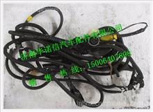 陕汽德龙奥龙分动器取力底盘电线束JZ91159770006TZ/JZ91159770006
