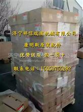 QSX15发动机 康明斯C0141007800 化油器密封垫/化油器密封垫C0141007800