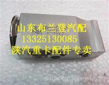 陕汽德龙F2000膨胀阀DZ13241821115/DZ13241821115