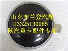 陕汽德龙奥龙电喇叭/81.25301.6066