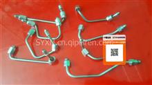 批发ISBE系列电控高压输油管 /4933420