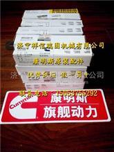 福田 ISGe4-380 空调皮带3698017/空调皮带3698017