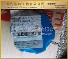 东风天锦国四 尿素罐盖子 后处理尿素喷嘴 尿素液总成/1205520-T13L0/1205750-T13L0