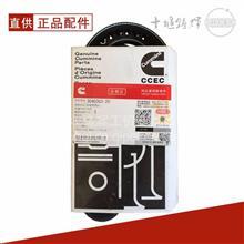 重康NT855发动机皮带/3040303-20