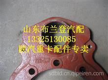 陕汽德龙曼桥大孔后制动底板DZ9112340055-2/DZ9112340055-2