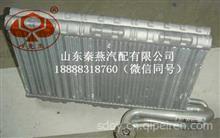重汽豪沃A7蒸发器总成/WG1664820014