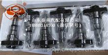 重汽豪沃PS8500油泵专用柱塞X170S/X170S