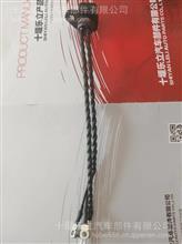 供应东风康明斯ISDE发动机喷油器线束/3287699