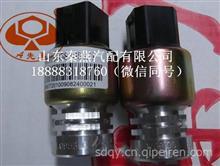 重汽豪沃车速传感器/WG9100583058