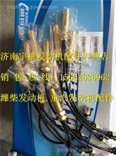 潍柴发动机配件WP10转速传感器612600190113/612600190113