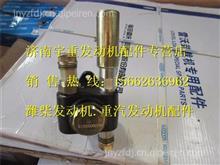 潍柴道依茨发动机配件输油泵 13029828/13029828