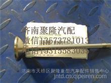 重汽豪沃曼发动机MC07原厂排气们 进气门/200V04101-0546