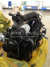 十年品牌老店 原装正品 康明斯L340-20发动机总成  /L340-20