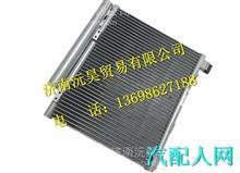 LG1613822002重汽豪沃HOWO轻卡冷凝器总成 /LG1613822002