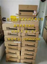 QSK19发动机 康明斯C0147078000 正六角螺母/正六角螺母C0147078000