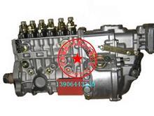 612601080379 潍柴290马力原装油泵总成/红岩金刚P10高压油泵大泵/612601080379