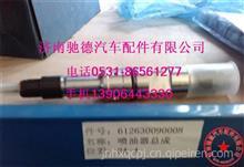 612630090008潍柴WP12.270发动机国三喷油器总成/612630090008