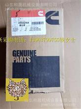 Perfect:美康QSK19活塞4955233 【康明斯品牌代理】/3090443/3804720