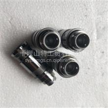 重庆康明斯K38 K19喷油器油嘴提前器/3069701