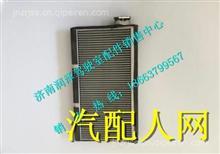 PDZ15221840701A陕汽德龙L3000蒸发器芯件/PDZ15221840701A