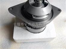 【3806180】适用于康明斯6CT8.3工程机械 水泵总成 3806180RX/3284162水泵总成