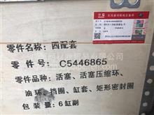C5446865东风康明斯ISL9.5发动机四配套 活塞5305838 5446862/C5446865