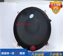 一汽青岛解放配件龙V配件原厂空滤空气滤清器总成/1109010-DP001