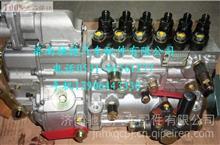 潍柴原装无锡威孚喷油泵总成612600081235型号BH6P120015大泵/612600081235