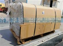 1101AH23DQ-010 华菱汉马H7 H6 H9 重卡 燃油箱总成650L铝合金)/1101AH23DQ-010