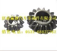 HFF2510121 CK1BZ安凯行星齿轮/HFF2510121 CK1BZ
