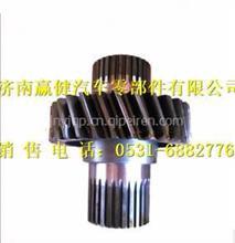 75201738航天泰特一级传动主动圆柱齿轮/ 75201738