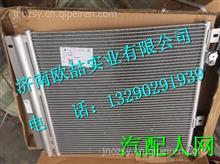 FG1698820040重汽王牌冷凝器总成 /FG1698820040