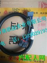 LG9704776002重汽豪沃HOWO輕卡ABS駕駛室線束