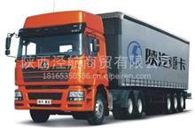 陕汽重卡德龙F3000,M3000,X3000驾驶室总成及附件/DZ91125000090