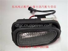 东风天龙天锦大力神转向照地灯踏步灯踏板护罩灯总成/3726240-C0100