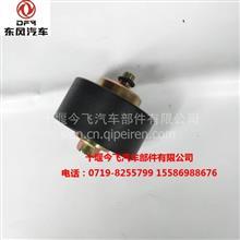 东风汽车 电器配件 供应东风东风康明斯东风天锦惰轮总成/ C5260382