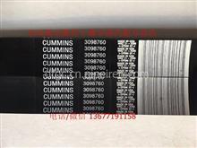 进口cummins/康明斯QSX15柴油发动机组风扇皮带/3098760